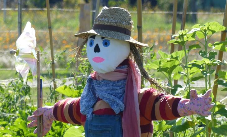 Connaissez-vous la permaculture ?